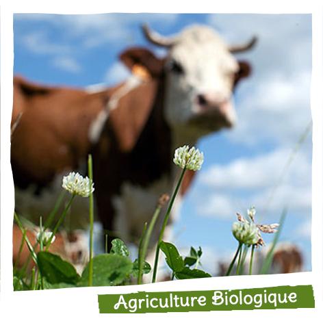 45% des produits que nous vendons sont issus de l'agriculture biologique.